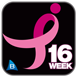 Susan G. Komen 3-Day® 16-Week Training Plan